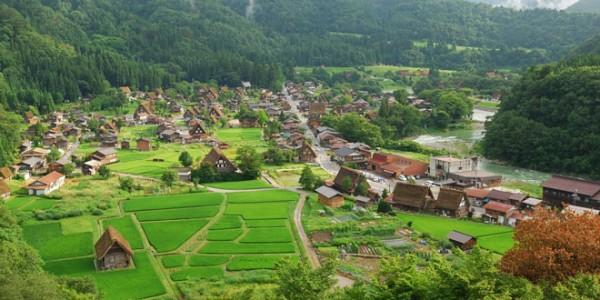 Wilayah Desa Kedung